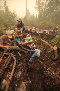 Tuanan project assistants work on putting out the fires (by Perry van Duijnhoven)